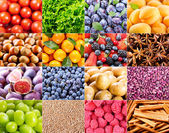 Collage of various fruit and vegetables — Stock Photo