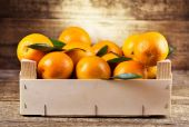 Ahşap kutusunda taze portakal — Stok fotoğraf