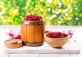 Fresh cranberries — Stock Photo