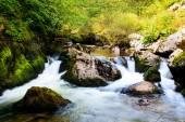 Río búlgaro otoño — Foto de Stock