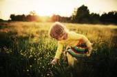 Cute little girl on meadow — Stock Photo