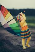 Little girl with rainbow umrella in the field — Stock Photo
