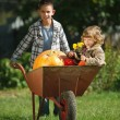 Girl and boy with pumpkins in the garden — Stock Photo #80152674