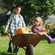Girl and boy with pumpkins in the garden — Stock Photo #80152754