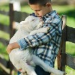 Boy with lamb on the farm — Stock Photo #80152836