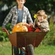Girl and boy with pumpkins in the garden — Stock Photo #80152914