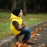 Little funny boy in autumn leaves portrait — Stock Photo #80155274