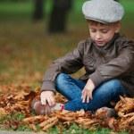 Little funny boy in autumn leaves portrait — Stock Photo #80155504