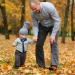 Father with son walking in autumn forest — Stock Photo #80702856