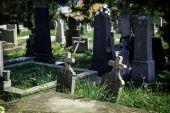 Graveyard 01 — Stockfoto