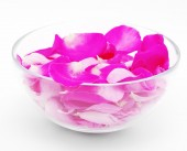 Petals of pink roses in  glass cup — Photo