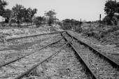 Old overgrown used railway tracks intersection merge artistic co — Stock Photo