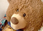 Old toy bear portrait — Stock Photo