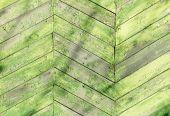 Yeşil boya ile çit — Stok fotoğraf
