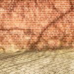 Tree Shadow on wall — Stock Photo #70955187