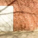 Tree Shadow on wall — Stock Photo #70955197