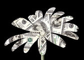 Abstract flower dollar on the black — Stock Photo