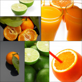 Citrus fruits collage — Stock Photo