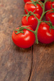 Fresh cherry tomatoes on a cluster — Stock Photo