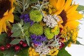 Hermosos ramos de flores y hierbas — Foto de Stock