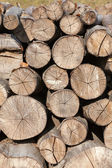 Background of firewood stacked in the woodpile — Stock Photo