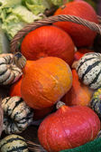 Pumpkins for sale in a greengrocery — Stock Photo