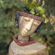 The flower pot in the form of the feminine head — Stock Photo #57487025