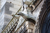 Paris - The gargoyles on the north side wall of the  Notre Dame Cathedral — Stock Photo