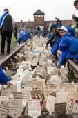 International Holocaust Remembrance Day . — Zdjęcie stockowe