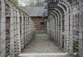 Auschwitz Ii-Birkenau. Polen. — Stockfoto