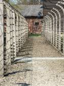 Auschwitz II Birkenau. Poland. — Stock Photo