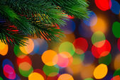 Christmas Background with Fir-tree Branch on the Holiday Lights Background — ストック写真