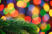 Christmas Background with Fir-tree Branch on the Holiday Lights Background — Stockfoto