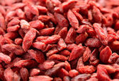 Background of Dried Red Goji Berries — Stock Photo