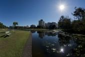 Urban park with lake — Stock Photo