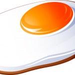 Fried egg — Stock Vector #66954601