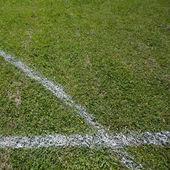 Soccer field grass — Foto Stock