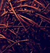 Barbed Wire — Stok fotoğraf