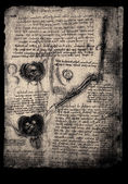 Old anatomy drawings — Stockfoto