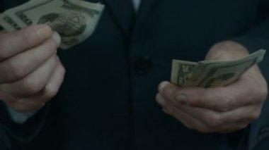 Sayım çok para 2 erkek eller — Stok video