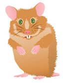 Cute cartoon hamster — Stock Vector
