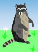 Amusing feathery racoon — Stock Vector