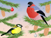 Bullfinch and tomtit on fir tree — Stock Vector