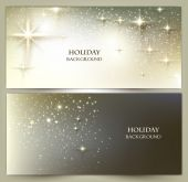 Set of Elegant Christmas banners — Stock Vector