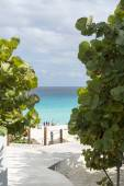 A view of the beautiful beach in Cancun, Mexico — Stock Photo