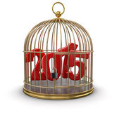 Gold Cage with 2015 (clipping path included) — Stock Photo