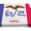 Map of Iowa state with flag — Stock Photo #72618579