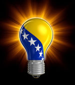 Light bulb with Bosnia and Herzegovina flag (clipping path included) — Stock Photo