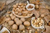 Herfst noten — Stockfoto