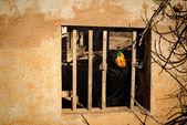Locked in Halloween monster — Stock Photo